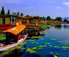 Srinagar Holiday