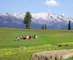 Honeymoon Tour To Srinagar