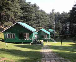 Srinagar Honeymoon Trip